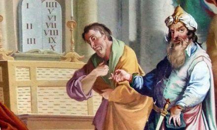 Почему седмица, следующая за Неделей о мытаре и фарисее, является сплошной?