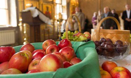 Когда освящение яблок может быть во вред?