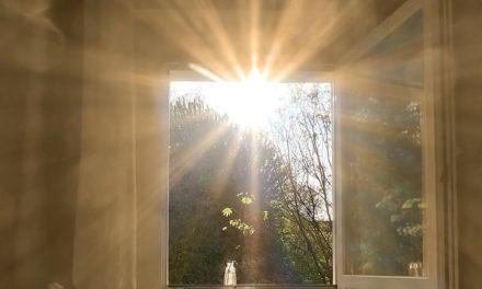 Сретение — лицом к лицу с Богом. Три истории о встрече