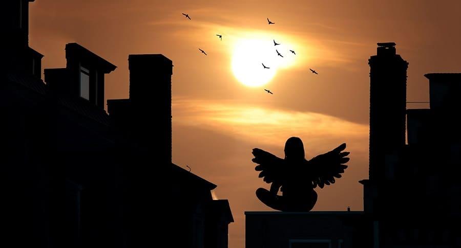 Если человек видит ангела, как это воспринимать?