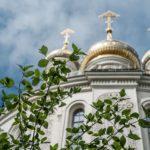 Прививание деревьев и Крещение