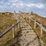 Неделя преподобного Иоанна Лествичника: к Богу ступень за ступенью